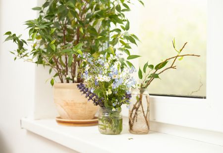 Small wildflowers are in the jar on the windowsill with other plants 免版税图像