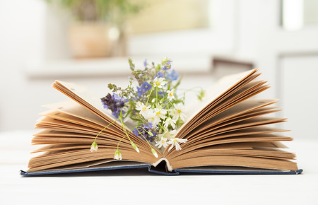 Open old book with small wildflowers on the pages lying on a white table Stock Photo