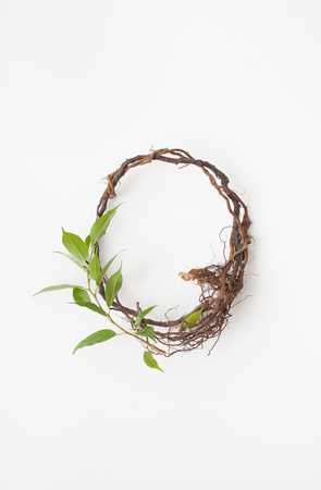 A circle of twigs on a white background. Place for text.