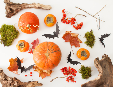 Background for Halloween pumpkins with wood scraps, autumn leaves, ash, moss and paper bats. Pattern.
