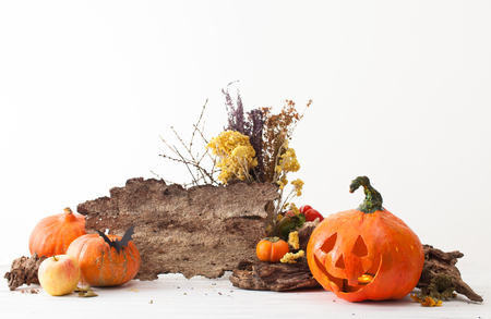 Festive decorations for the holiday Halloween on a white table. The empty bark of a tree for drawing text. Stock Photo