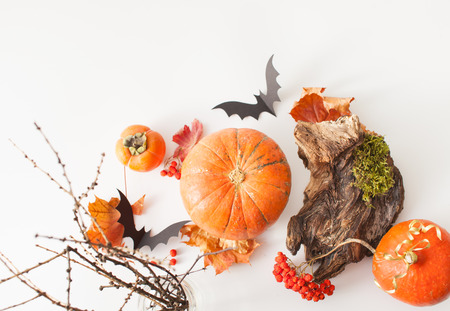 Background for Halloween pumpkins with wood scraps, autumn leaves, ash, moss and paper bats. An empty space to insert text.
