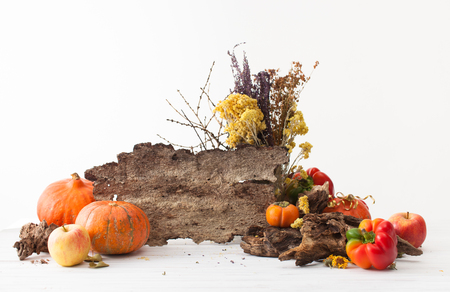 Pumpkins, apples, persimmons, peppers, herbs and an empty bark of the tree for text on a white table. Background for thanksgiving day.