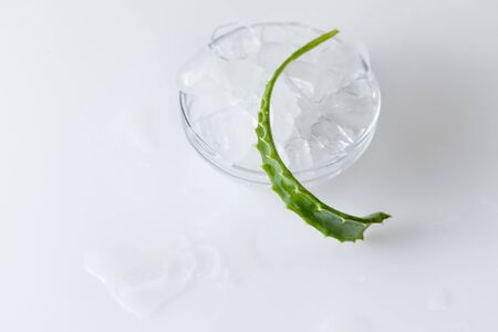 The concept of preserving the beauty of the skin with ice and aloe Vera. Recipes of beauty ice to hydrate.