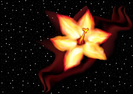 flower of fire on the background of the starry sky