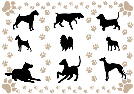 vector image of silhouettes of dogs and paw prints