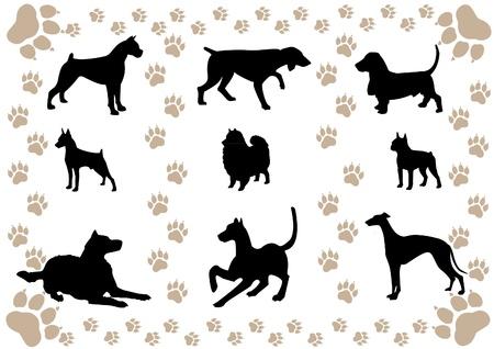 doberman: Vektor-Bild von Silhouetten von Hunden und Pfotenabdr�cke Illustration