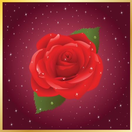 vector postcard with the image of rose