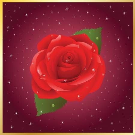 Wektor pocztówka z wizerunkiem róży Ilustracja