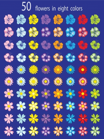 A collection of 50 flowers for the design  Vector colorful illustration