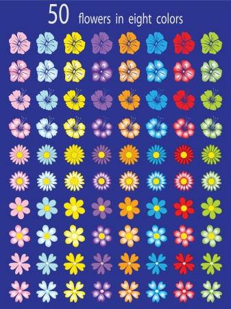 Kolekcja 50 kwiatów dla kolorowych ilustracji wektorowych projektowania Ilustracja