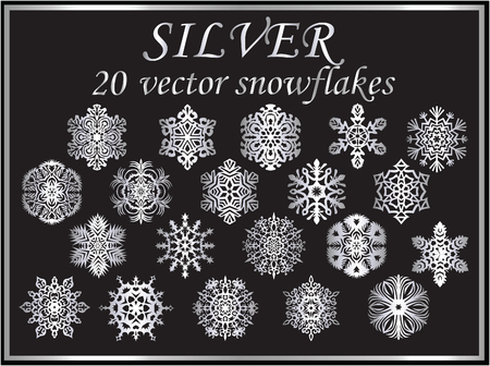 Vector set silver snowflakes on black background