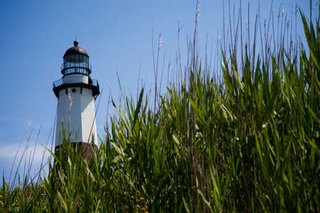 Montauk Lighthouse over blue sky with weeds in the foreground photo
