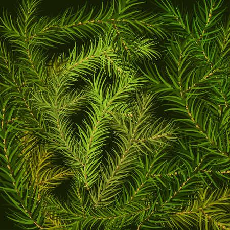 Christmas tree fir branch background. Vector illustration. Ilustração