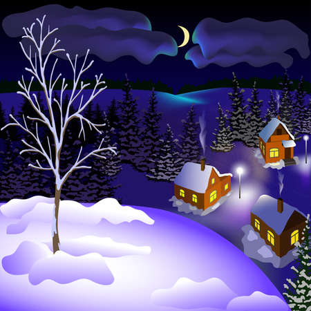 View of landscape of winter town at the night from hill. Night, moon, sky, skyline, forest, houses