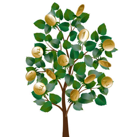 Money tree with leaves and gold coins instead of fruit