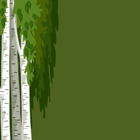 Green background with birches. Green background with three trunks of birches and leaves Ilustração