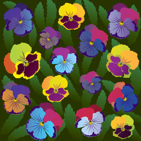 Colored pansy flowers on background of leaves Ilustração