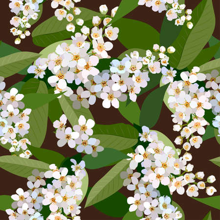 Seamless background from bunch of blossoming cherries flower Ilustração