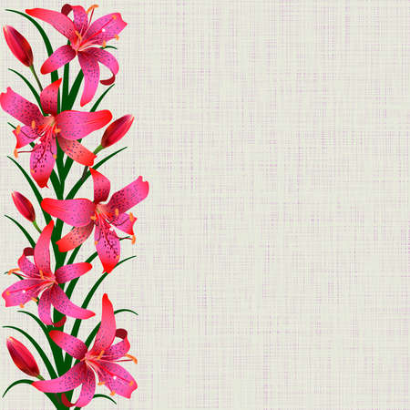 tiger lily: Pale background with red tiger lily flowers leaves and buds Illustration