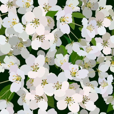 apfelbaum: Nahtlose Hintergrund aus Haufen von blühenden Apfelbaum Blumen