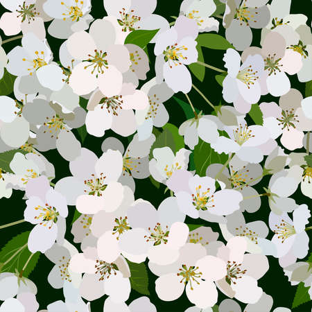 Seamless background from bunch of blossoming apple tree flowers Ilustração