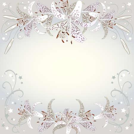 Floral background of white lilia flowers.  Floral copy-space Ilustração