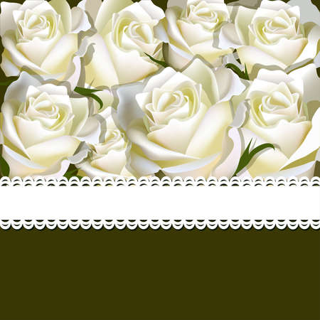 Floral background of white rose with ribbon. Floral copy-space Ilustração
