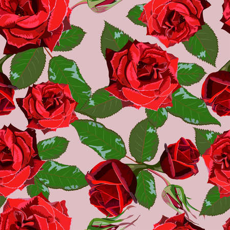 Seamless background from red roses and leaves Banco de Imagens - 49256746