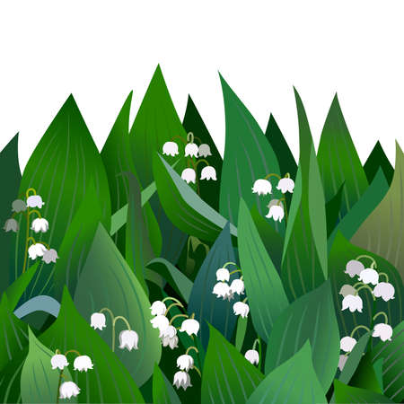 Blossoming lilies of the valley flowers and leaves