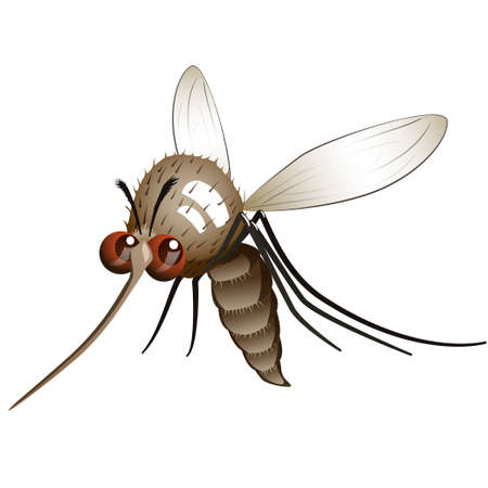 Cartoon character flying mosquito. Illustration