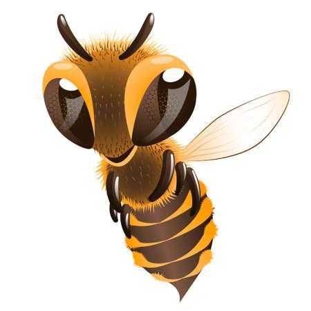 Cartoon character flying bee. Illustration