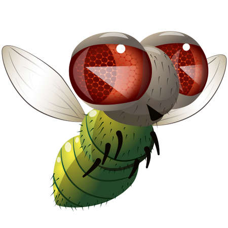 Illustration of cartoon character flying green fly over white background. Illustration