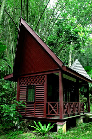 bamboo house: Country House, Malaysia