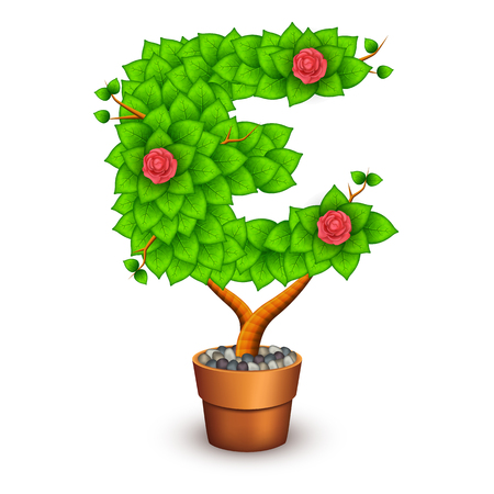 clay pot: Isolated tree with flowers in clay pot. In the form of letter E.