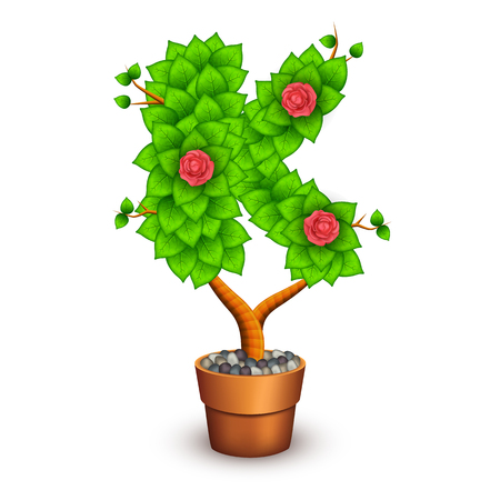 clay pot: Isolated tree with flowers in clay pot. In the form of letter K.