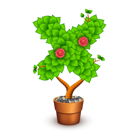 clay pot: Isolated tree with flowers in clay pot. In the form of letter X.  Illustration