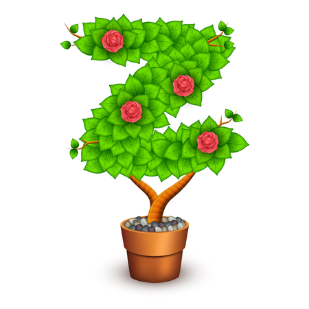 clay pot: Isolated tree with flowers in clay pot.