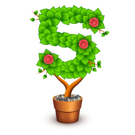 clay pot: Isolated tree with flowers in clay pot. In the form of number 5.