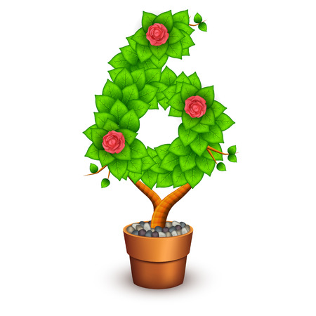 clay pot: Isolated tree with flowers in clay pot. In the form of number 6.