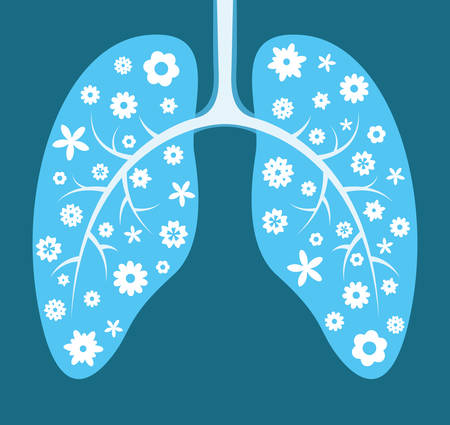 healthy lungs: Healthy lungs. Cartoon vector illustration Illustration