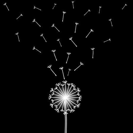 dandelion wind: Vector illustration with  dandelion blowing in the wind.