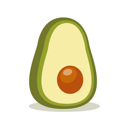 Avocado. Vector illustration isolated on white background Ilustração