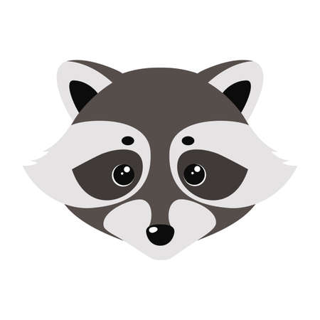 Raccoon cute face. Vector illustration on white background