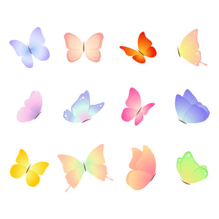 Butterflies. Vector set isolated on white background