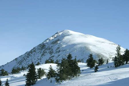 turkiye: Top of the Ilgaz Mountain- Turkiye