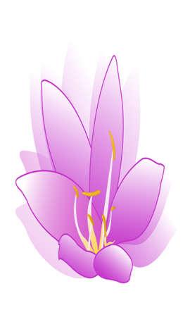 flower vector Stock Vector - 17041380