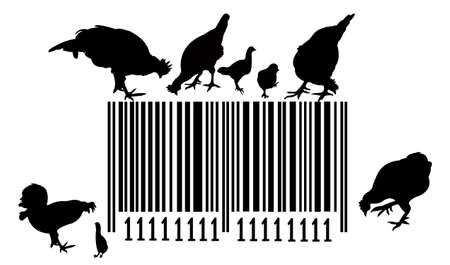 cocky: Bar code and chickens on silhouette illustration Illustration