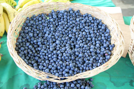 Harvest of fresh acai berries at farmers organic market in Turkey