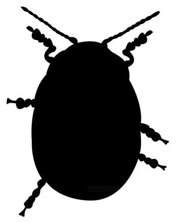 parasitic: an insect silhouette Illustration